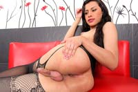 Mariana tsgfe033  mariana is one hot libidinous ladyboy wanting some cock  httpjoin trans500 comviewbanner phpid1923thumbnailtypejpg. Mariana is one hot horny shemale wanting some dick!